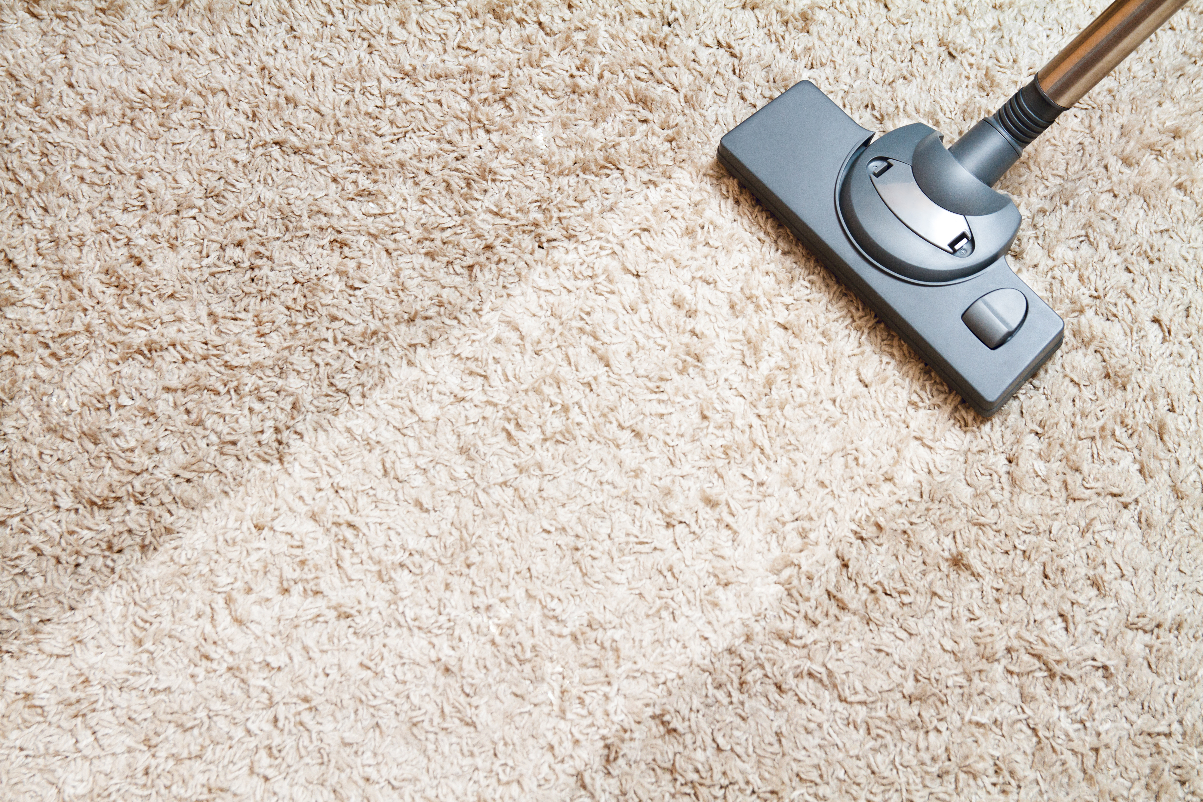 Carpet Cleaning Tips for Your Office