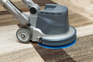 33-questions-for-carpet-cleaning