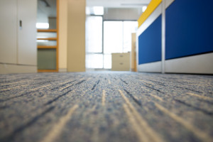 65-maintain-office-carpet